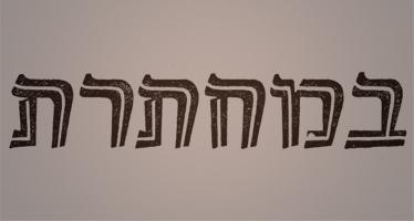 עיתון במחתרת | כתבי עת - ישראל אלדד