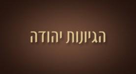 הגיונות יהודה