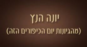 יונה הנץ - ישראל אלדד