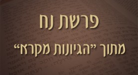 פרשת נח - מתוך הגיונות מקרא - ישראל אלדד